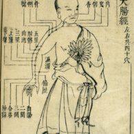 Planche ancienne d'acupuncture.